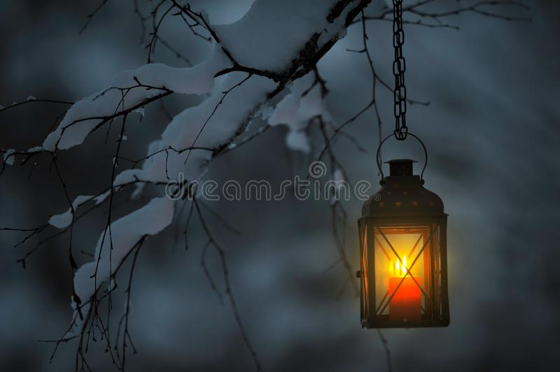 Candle lantern hanging from tree branch royalty free stock photo