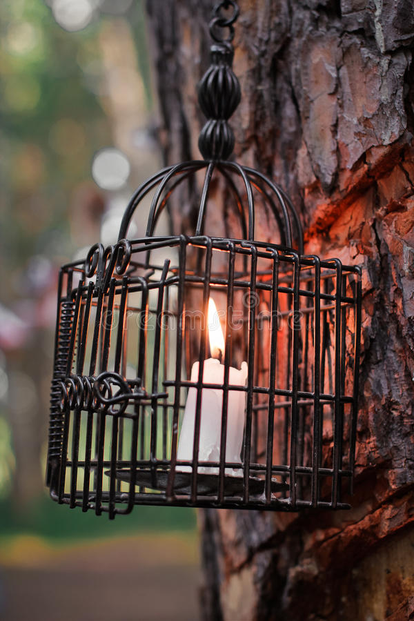 Download Candle lantern on the tree stock photo. Image of fire - 44143104