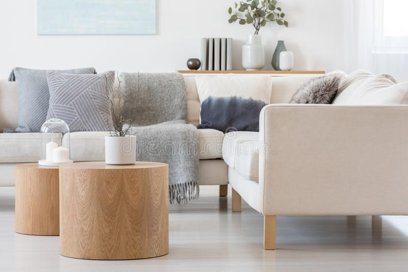 Candle and plant in grey concrete pot on wooden coffee tables in front of scandinavian designed sofa stock photo