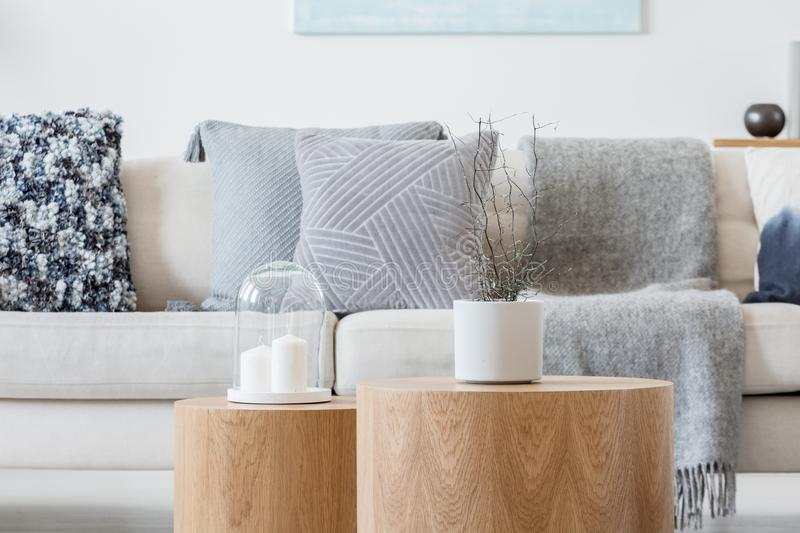 Candle and plant in grey concrete pot on wooden coffee tables in front of scandinavian designed sofa. Candle and plant in grey concrete pot on wooden tables in royalty free stock image