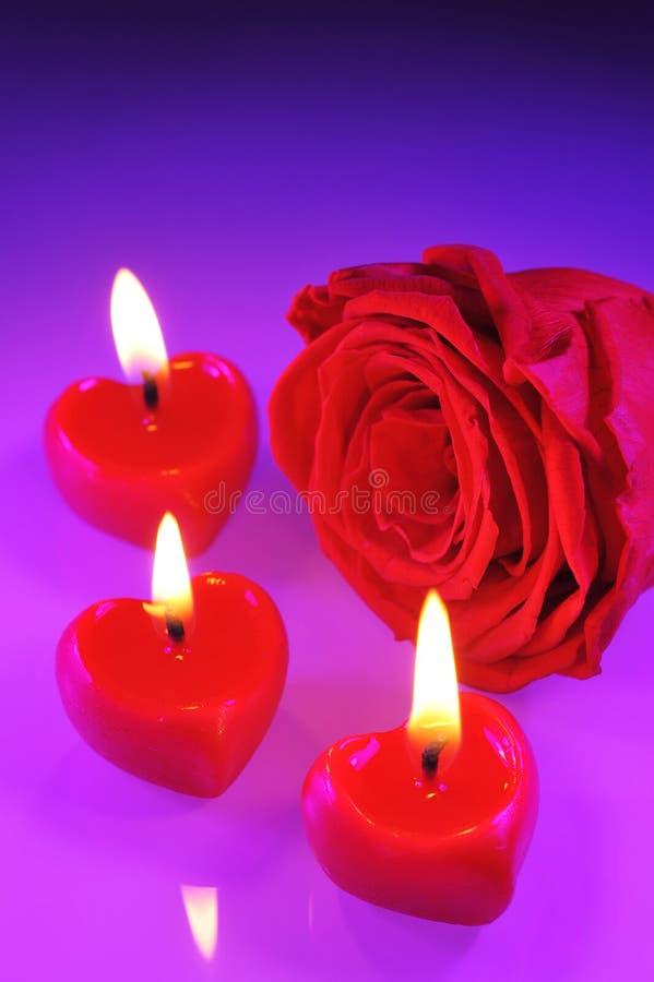 Candlehearts stock photos