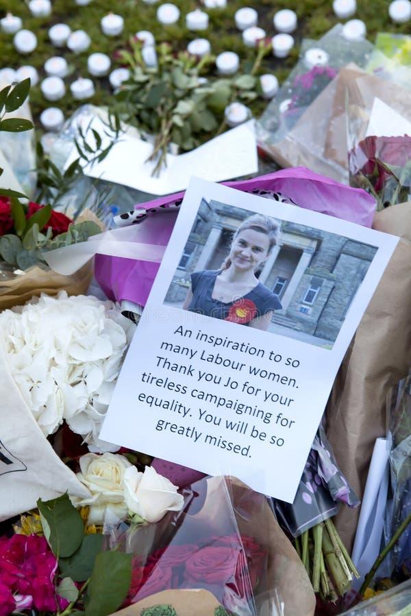 Candllelitwake voor Moorde MP, PB Cox royalty-vrije stock foto