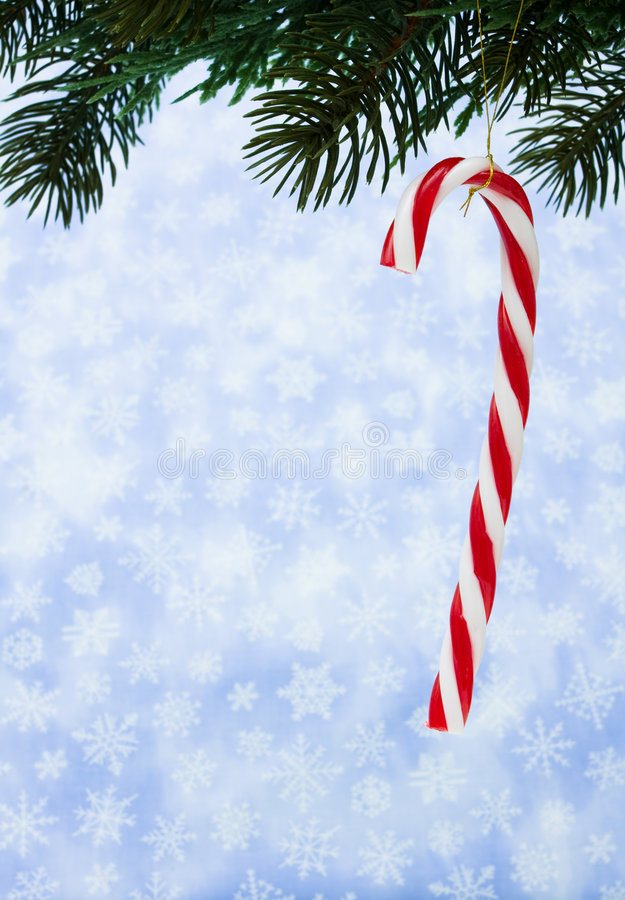 Download Candy Cane stock photo. Image of background, holiday, needles - 7562802