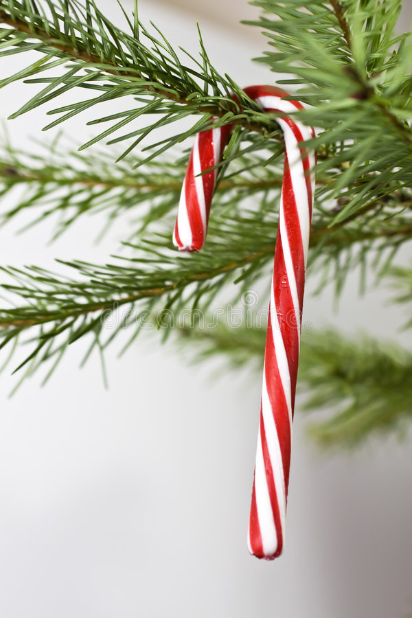 Download Candy Cane Holiday Decoration Stock Photo - Image: 7320314