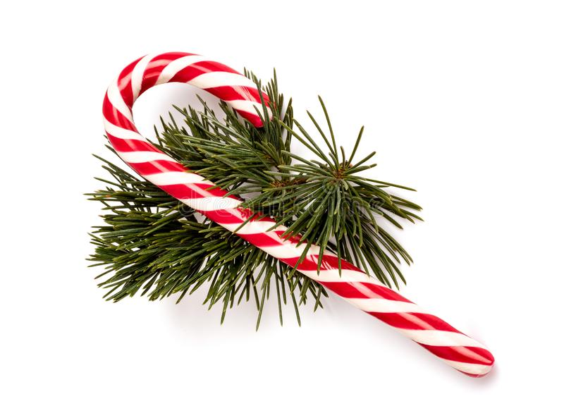 Candy cane with pine branch stock photo