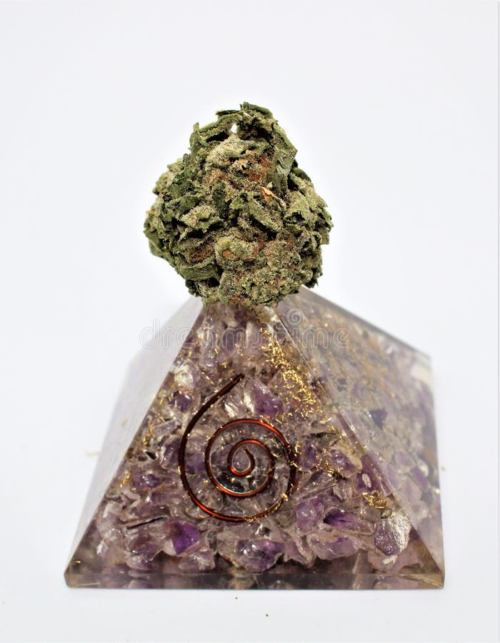 Candyland cannabis strain on orgonite stock image