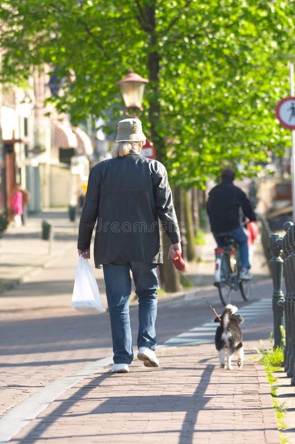 Cane ambulante dell'uomo immagine stock libera da diritti