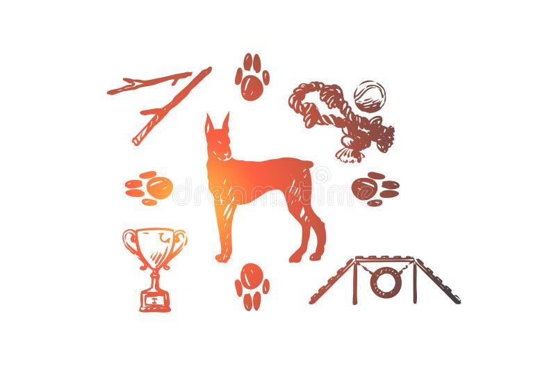 Cane, animale domestico, animale, accessori, concetto di cura Vettore isolato disegnato a mano illustrazione di stock