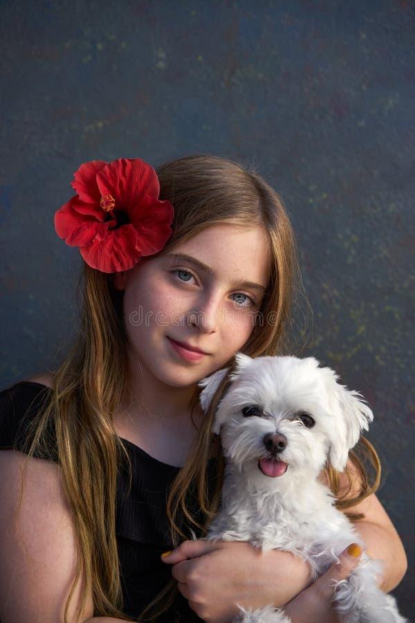 Cane biondo della ragazza del bambino e di animale domestico del maltichon immagini stock