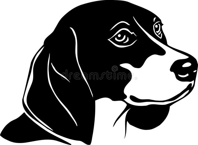 Cane da lepre illustrazione di stock