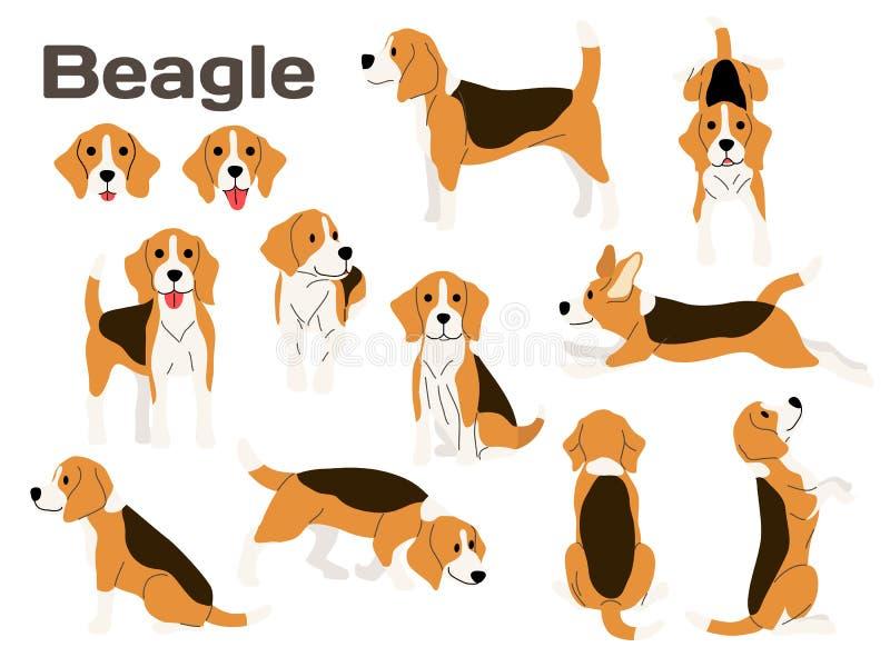Cane da lepre, cane nell'azione, cane felice illustrazione vettoriale