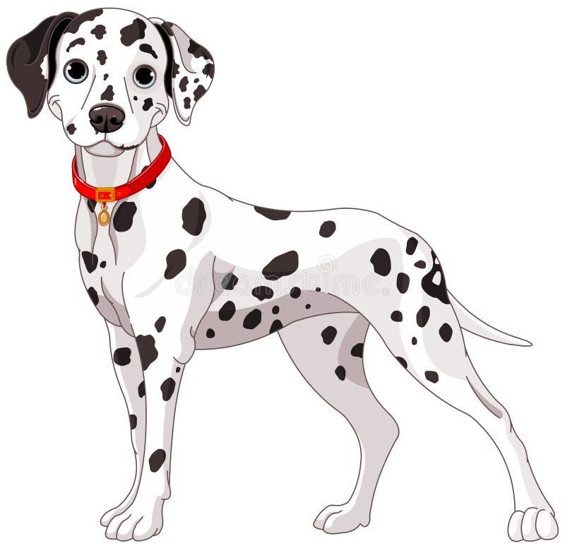 Cane dalmata sveglio illustrazione vettoriale