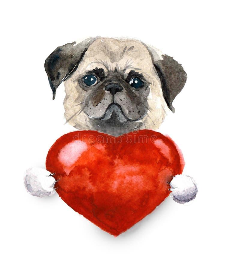 Cane del carlino dell'acquerello con cuore Pets l'illustrazione illustrazione vettoriale