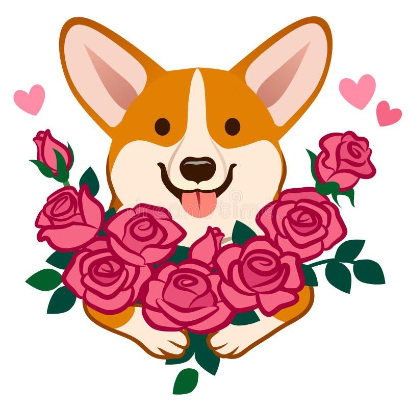 Cane del Corgi che tiene un mazzo dell'illustrazione del fumetto di vettore delle rose Amore umoristico sveglio divertente, amici royalty illustrazione gratis