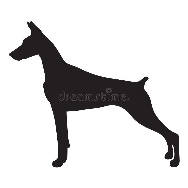 Cane del doberman dell'ombra, vettore illustrazione di stock