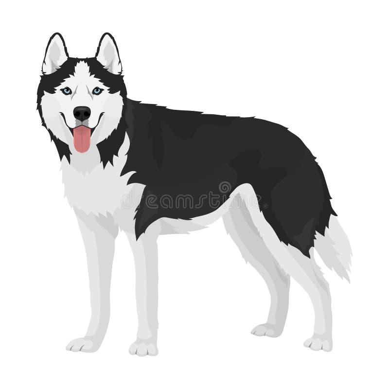 Cane del husky siberiano illustrazione di stock