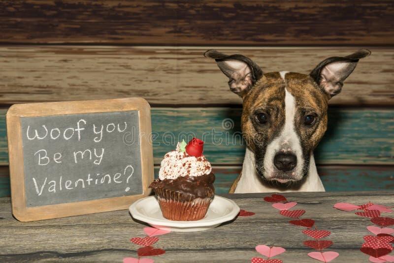 Cane del ` s del biglietto di S. Valentino fotografia stock