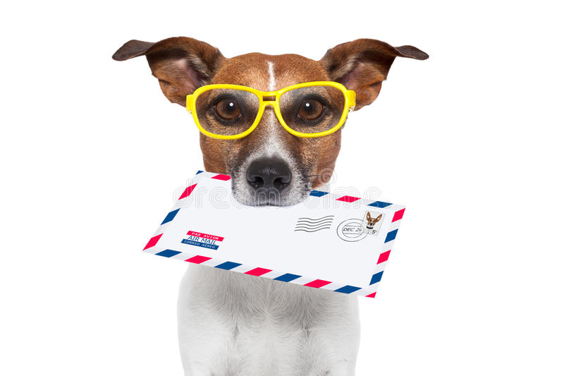 Cane della posta fotografie stock