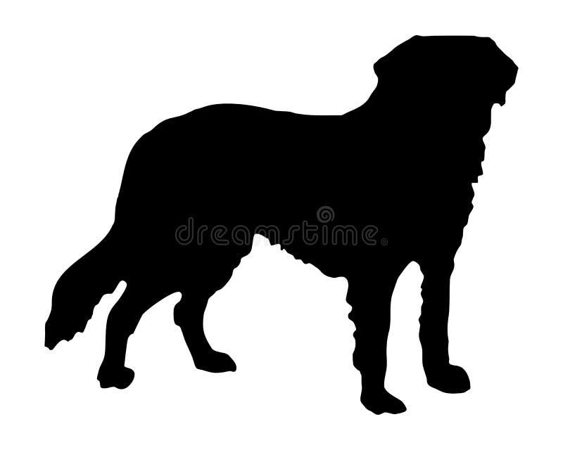 Cane di Bernard del san illustrazione vettoriale