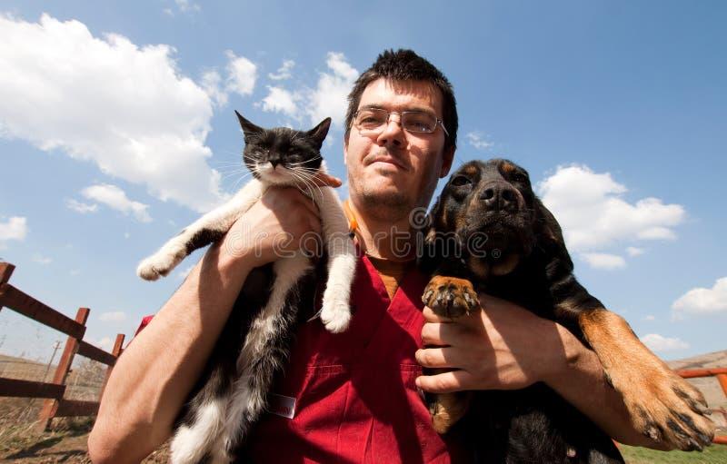 Cane e gatto della holding del controllare immagini stock