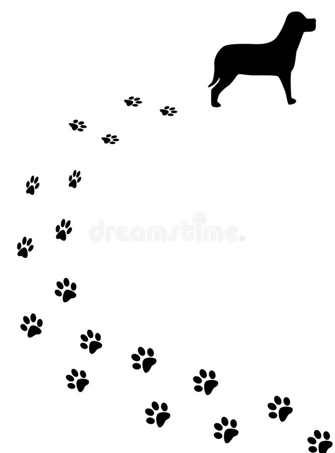 Cane e piste fotografia stock