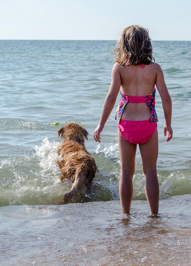Cane e ragazza che giocano ampiezza fotografie stock