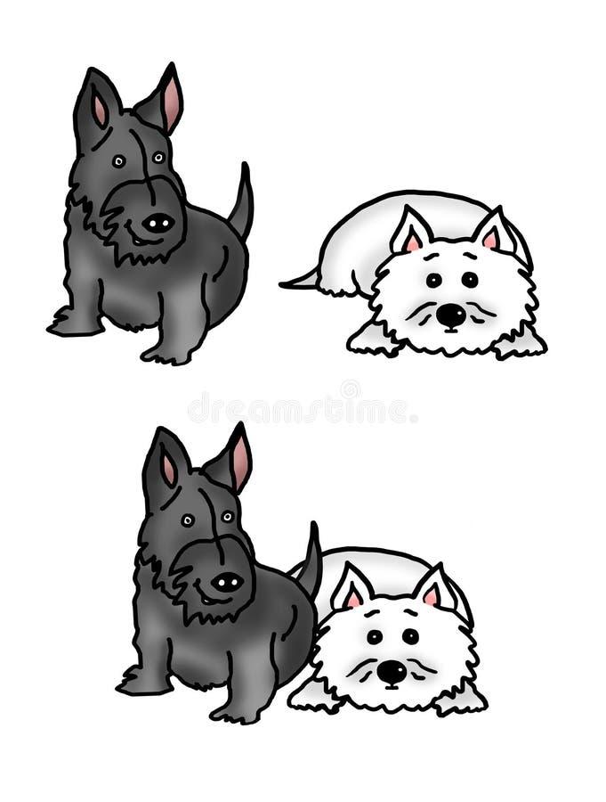 Cane e Westie dello Scottie immagini stock