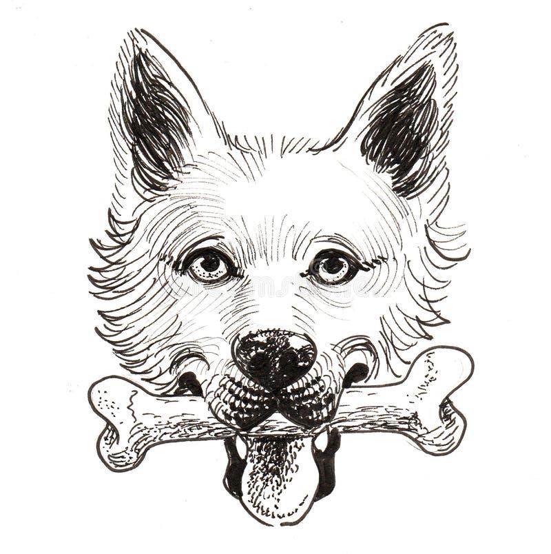 Cane ed osso illustrazione di stock