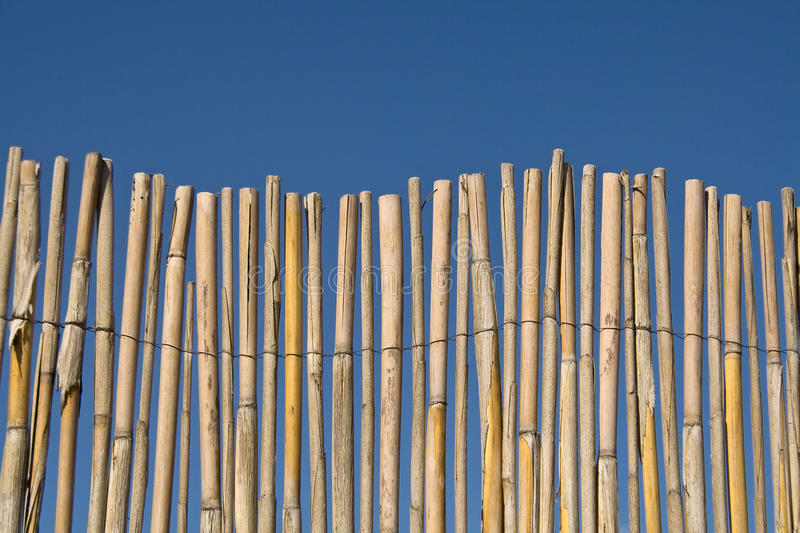 Download Cane Fence Stock Image - Image: 23902831