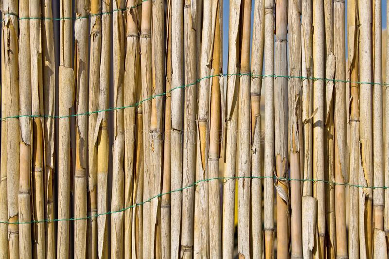 Cane fence texture as background. Cane fence texture as a background stock photography