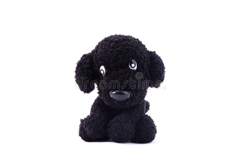 Cane nero che tricotta bambola fotografia stock libera da diritti