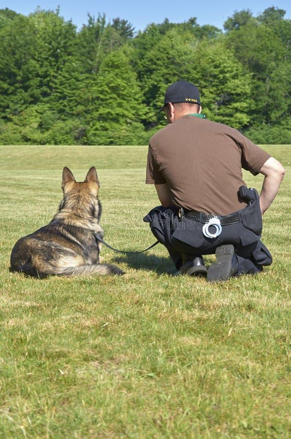 Cane poliziotto K9 ed ufficiale immagine stock