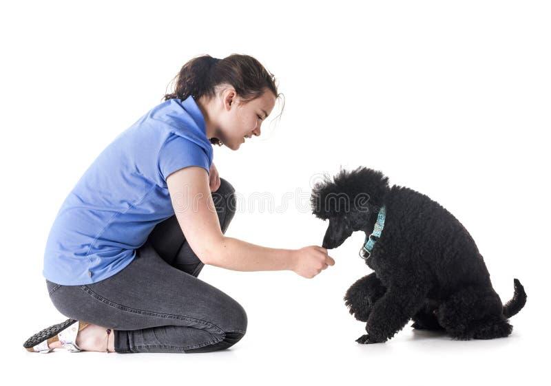 Cane, proprietario ed obbedienza fotografie stock libere da diritti