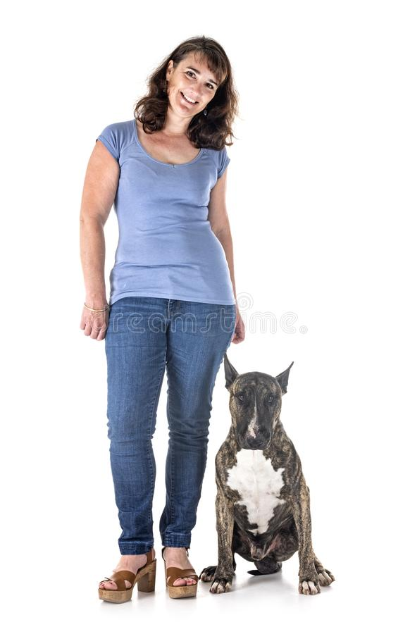 Cane, proprietario ed obbedienza fotografie stock