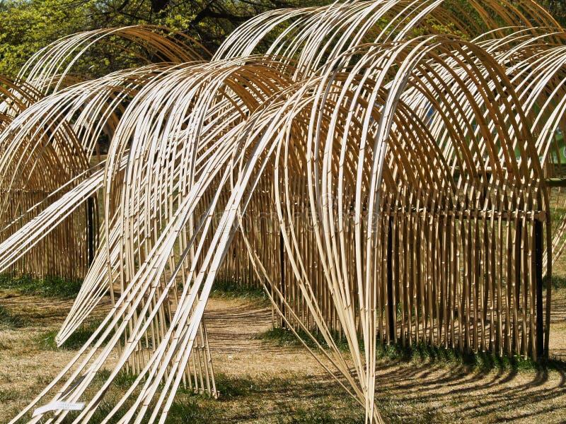 Cane Sculpture extérieur provisoire, courbes d'écoulement photo stock