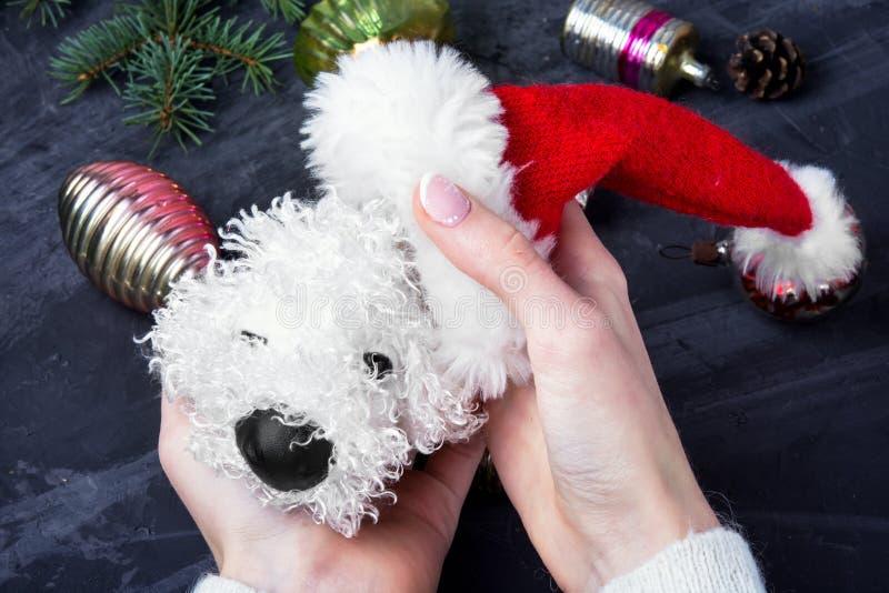 Cane simbolico di Natale di festa fotografie stock libere da diritti
