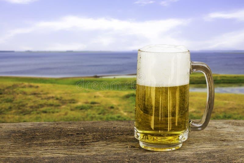 Caneca de cerveja fria fotografia de stock royalty free