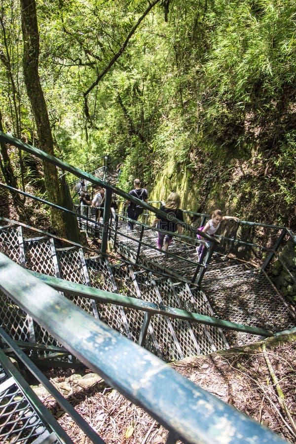 Canela - Rio Grande do Sul - il Brasile immagini stock