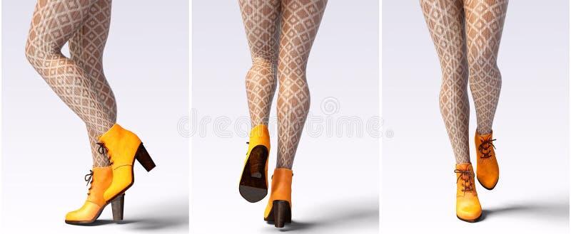 Caneleiras de lã e metade-grânulos dos pés fêmeas bonitos ajustados ilustração stock