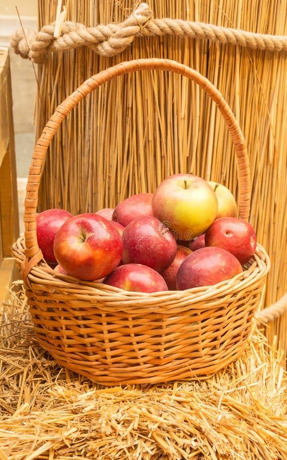Canestro con le mele rosse mature fotografia stock libera da diritti