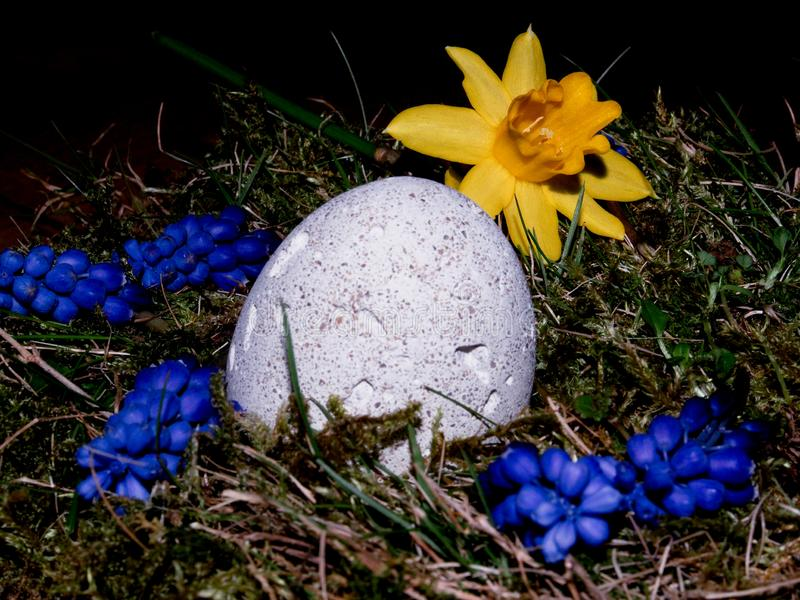 Canestro con le uova di Pasqua su fondo bianco fotografia stock