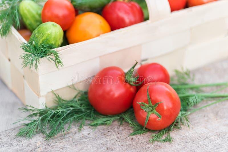 Canestro con le verdure decorate con aneto fotografia stock libera da diritti
