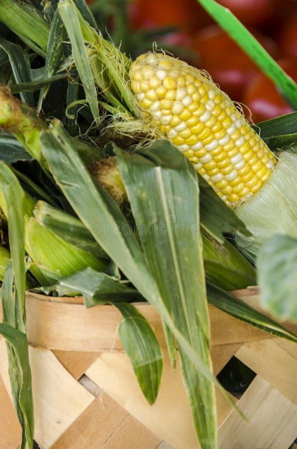 Canestro del cereale dalle verdure del mercato degli agricoltori immagini stock libere da diritti