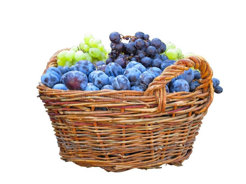 Canestro di frutta di vimini con le prugne e l'uva isolate sopra le sedere bianche fotografia stock libera da diritti