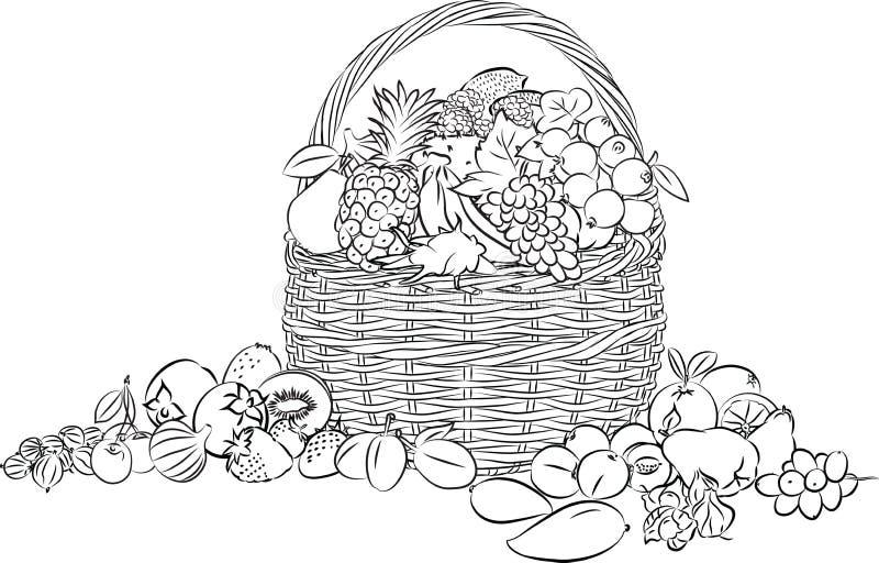 Canestro di frutti illustrazione vettoriale