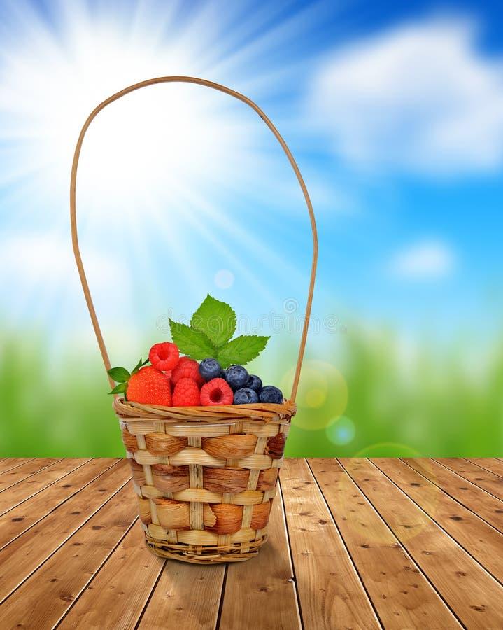Download Canestro Di Legno Con I Frutti Immagine Stock - Immagine di mirtilli, gruppo: 55359209