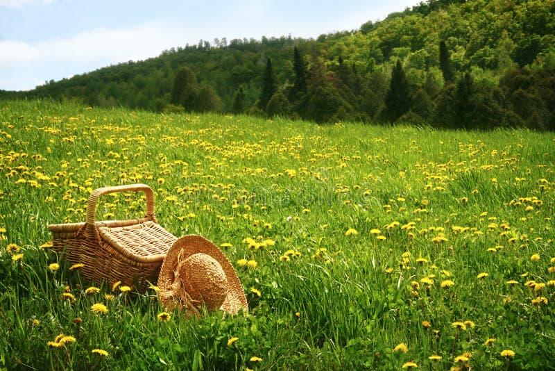 Canestro di picnic nell'erba fotografie stock libere da diritti