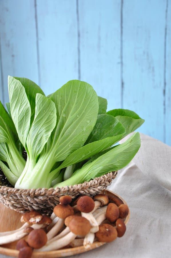 Canestro di verdura e del fungo freschi immagini stock libere da diritti