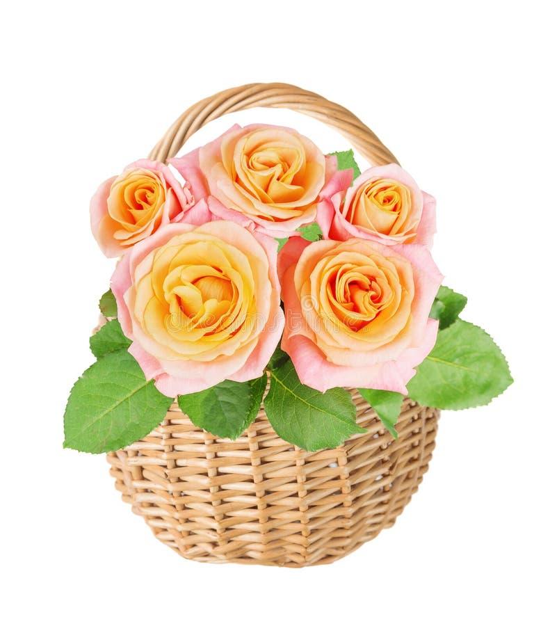 Canestro di vimini con i fiori rosa giallo-rosa su un fondo bianco fotografia stock libera da diritti