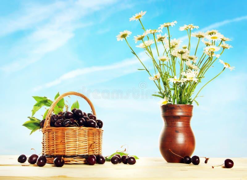 Canestro di vimini in pieno della ciliegia e delle margherite nel lanciatore immagini stock libere da diritti